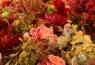 Las flores no podían faltar en esta boda