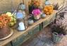 Frutas y flores como elementos de color